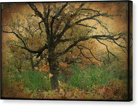 Halloween Tree 2 Canvas Print