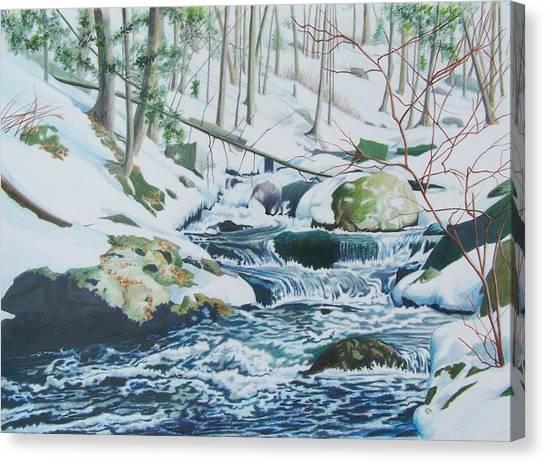 Hamburg Mountain Stream Canvas Print