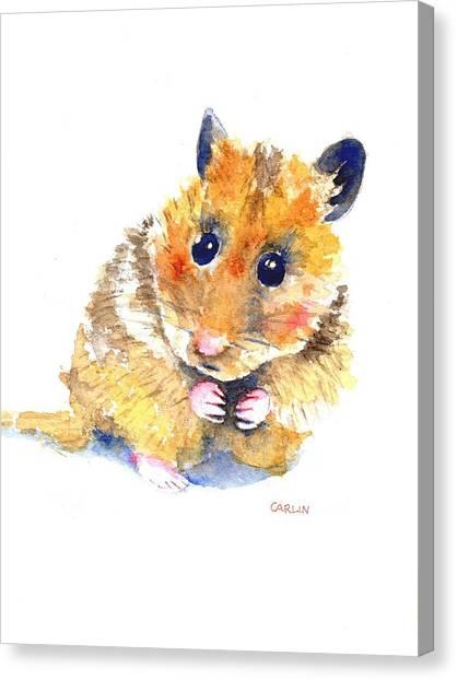 New Baby Canvas Print - Hamster Watercolor Painting by Carlin Blahnik CarlinArtWatercolor