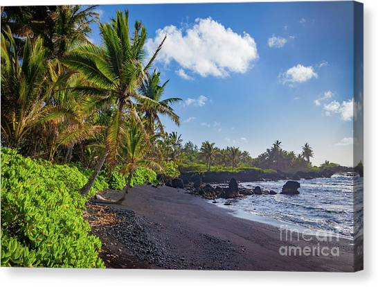 Splashy Canvas Print - Hana Bay Palms by Inge Johnsson