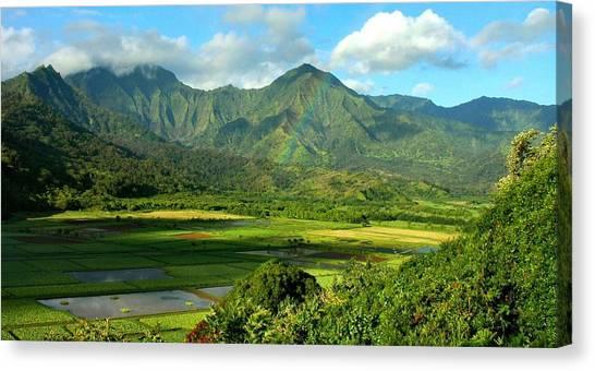 Hanalei Valley Rainbow Canvas Print by Stephen Vecchiotti