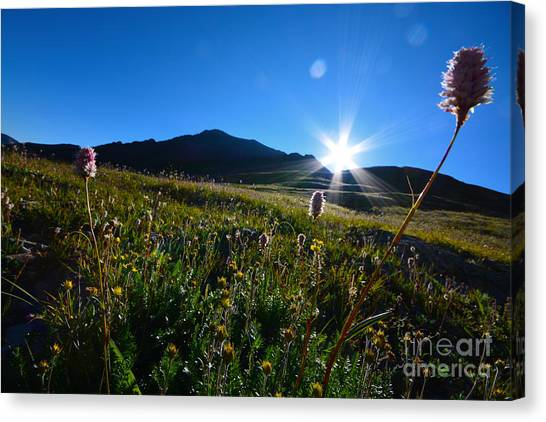 Canvas Print featuring the photograph Handies Peak Sunrise by Kate Avery