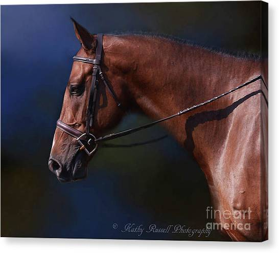 Handsome Profile Canvas Print