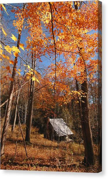 Hannah Cabin Canvas Print by Alan Lenk