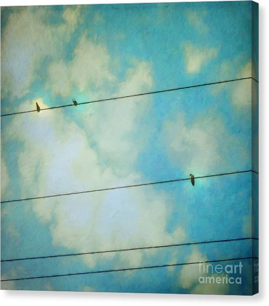 Swallow Canvas Print - Happiness by Priska Wettstein