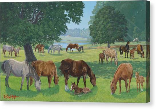 Happy Hollow Mares Canvas Print by Howard Dubois