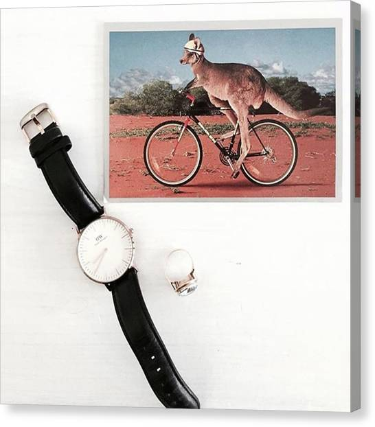 Kangaroo Canvas Print - Happy Memories (more On The Blog). This by Janna Brom