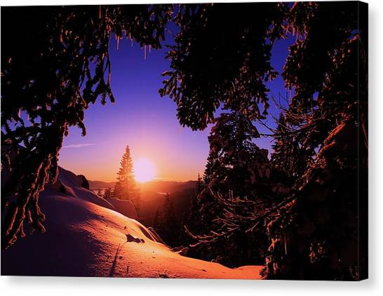Canvas Print featuring the photograph Happy New Year  by Sean Sarsfield