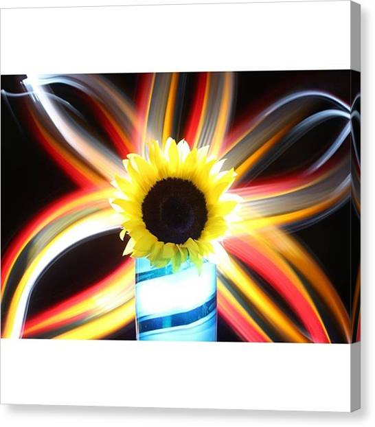 Sunflowers Canvas Print - Happy Saturday! Spring Is Near:) by Andrew Nourse