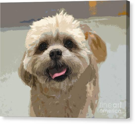 Happy Shih Tzu Canvas Print