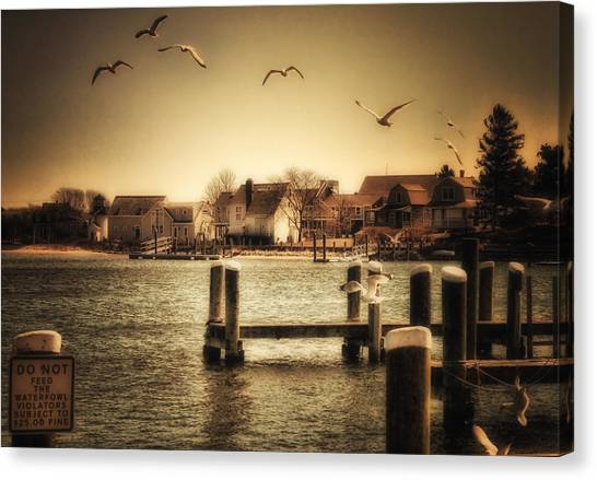 Harbor View Canvas Print by Gina Cormier