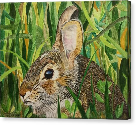 Hare's Breath Canvas Print