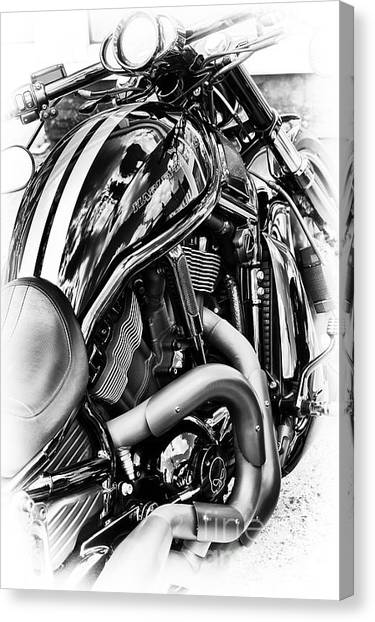 Street Rods Canvas Print - Harley Night Rod by Tim Gainey