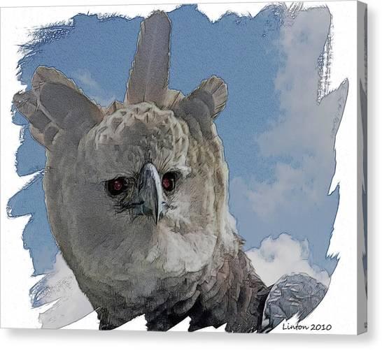 Harpy Eagle Canvas Print - Harpy Eagle Portrait by Larry Linton