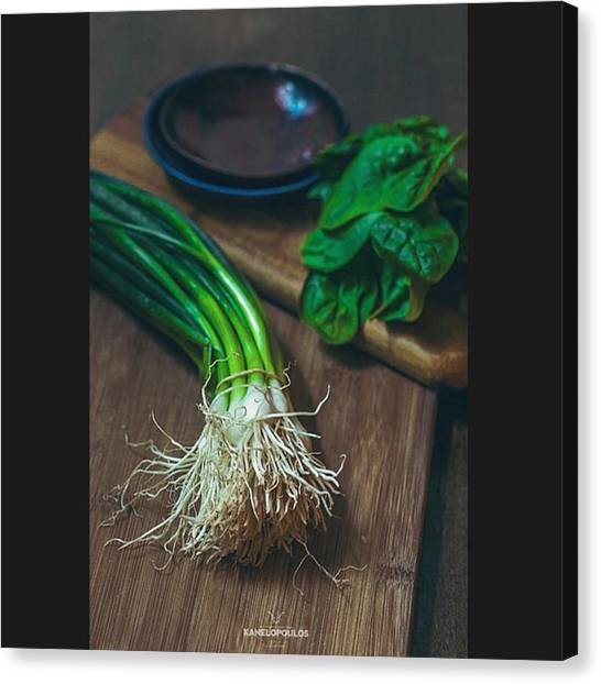 Greek Art Canvas Print - Harry Kanelopoulos Photography Greens by Harry Kanelopoulos Photography