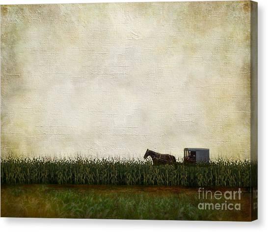 Corn Field Canvas Print - Harvest by AJ Yoder