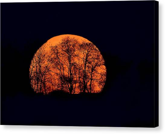 Harvest  Moon Rising Canvas Print