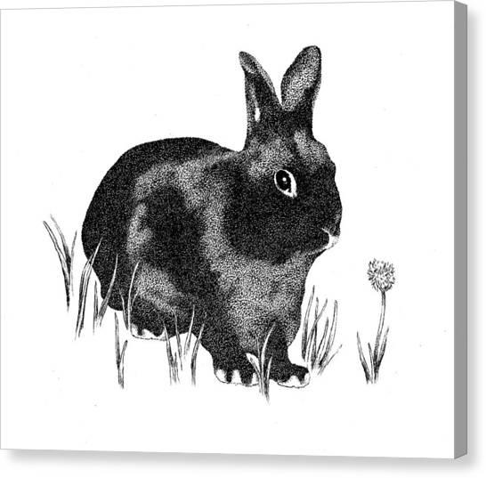 Hasenpfeffer Canvas Print