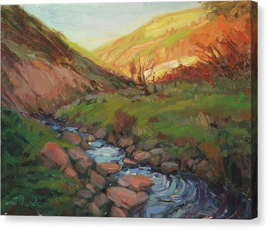 Countryside Canvas Print - Hatley Gulch by Steve Henderson