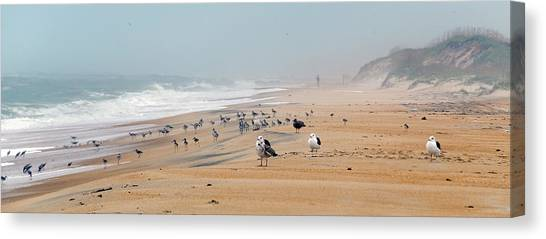 Hatteras Island Beach Canvas Print