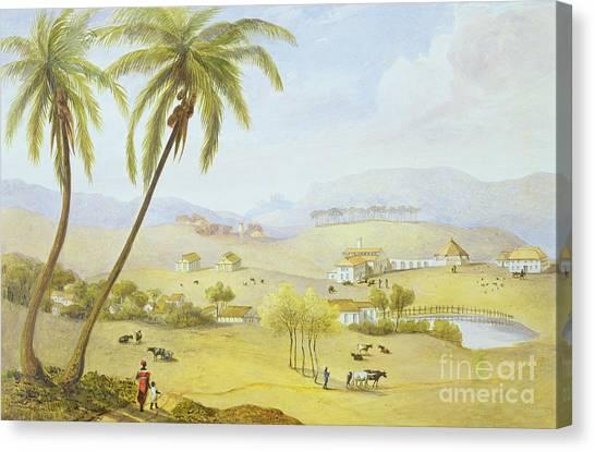Jamaican Canvas Print - Haughton Court - Hanover Jamaica by James Hakewill