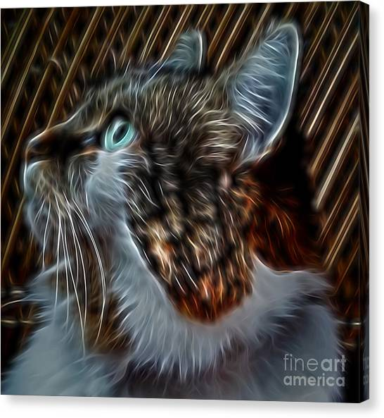 Haunting Stare Canvas Print