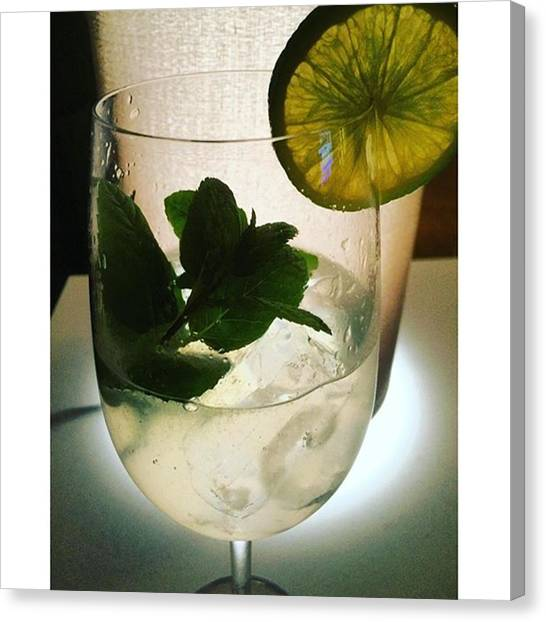 Gin Canvas Print - Have A Nice Saturday Evening Everybody! by Selda Cankaya