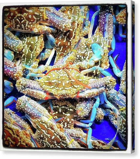 Canvas Print featuring the photograph Having A Crabby Trip. But In A Good by Mr Photojimsf