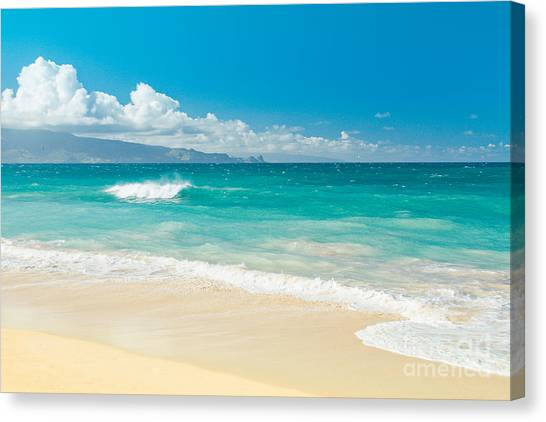 Hawaii Beach Treasures Canvas Print