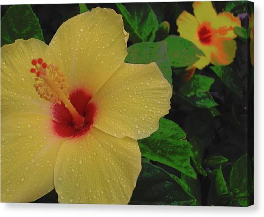 Hawaiian Sunrise Canvas Print by JAMART Photography