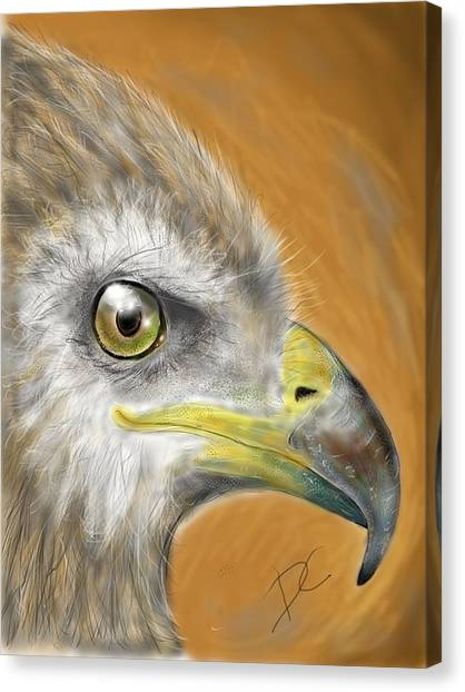 Canvas Print featuring the digital art Hawk by Darren Cannell