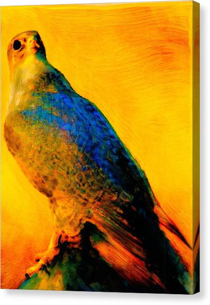 Hawk Spirit Canvas Print