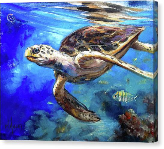 Saltwater Life Canvas Print - Hawksbill by Tom Dauria