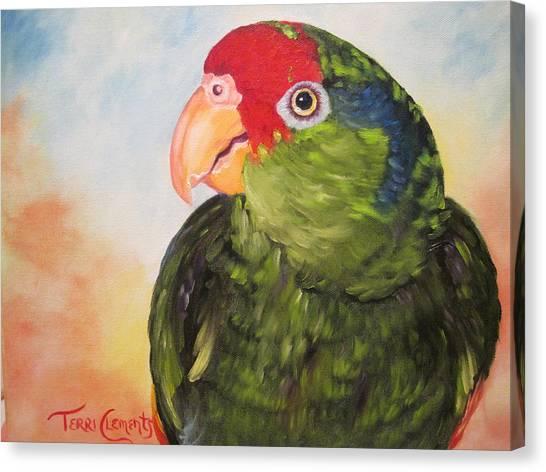 Hawthorne Canvas Print by Terri Clements
