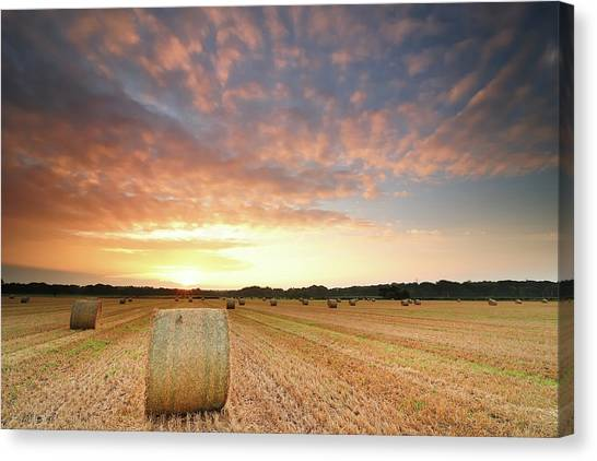 Bales Canvas Print - Hay Bale Field At Sunrise by Stu Meech