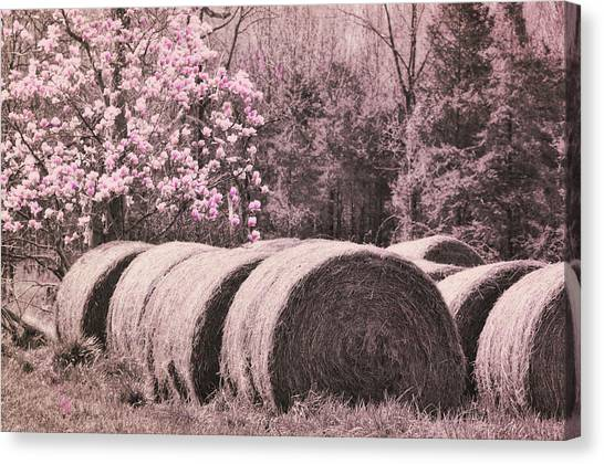Hay Bales Canvas Print by JAMART Photography