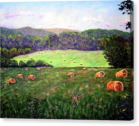 Hay Field Canvas Print by Stan Hamilton
