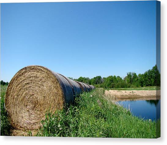 Hay Roll Canvas Print by Todd Zabel