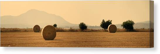 Hay Bales Canvas Print - Hay Rolls  by Stelios Kleanthous
