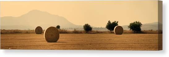 Hay Bales Canvas Print - Hay Rolls  by Stelios Kleanthous