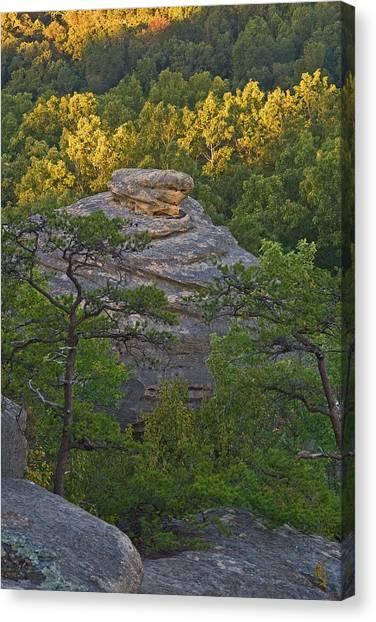 Hay Stack Rock.  Canvas Print
