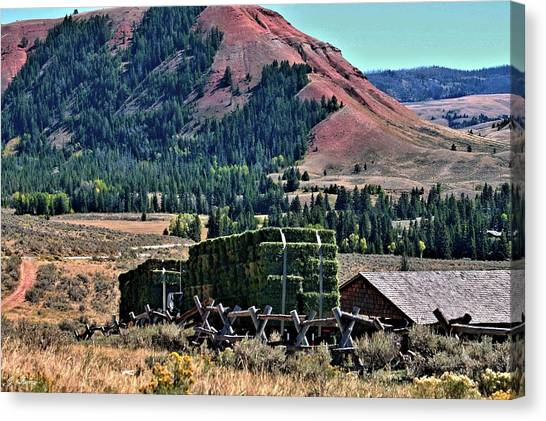Teton National Forest Canvas Print - Hay Wagons by G Berry