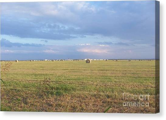 Haybales With Violet Sky Canvas Print