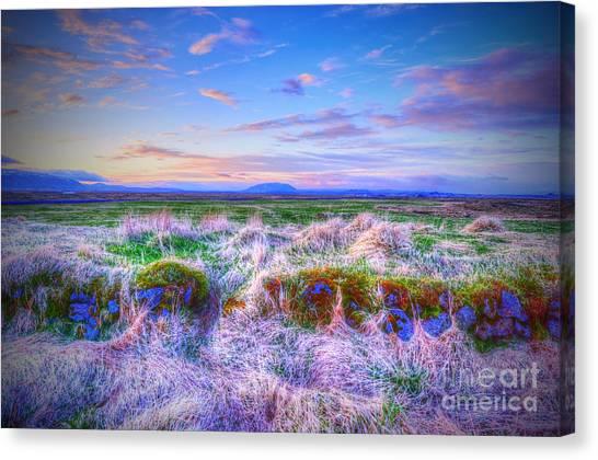 Hayfield Near Selfoss Iceland Canvas Print
