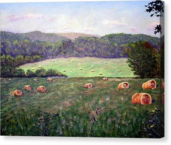 Hayfield  Canvas Print by Stan Hamilton