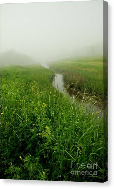 Canvas Print featuring the photograph Hazy Morning by Sandy Adams