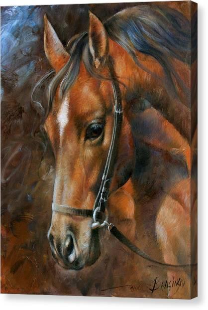 Horse Portrait Canvas Print - Head Horse by Arthur Braginsky