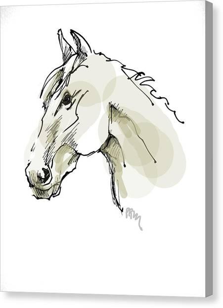 Head Sketch  Canvas Print