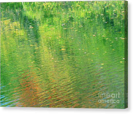 Healing In All Forms Canvas Print