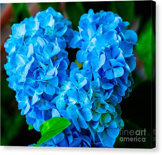 Heart Of Blue Canvas Print